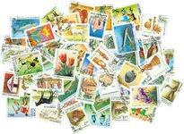 50张不同俄罗斯国家邮票包