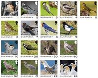 Guernsey - Fugle dagligmærker - Postfrisk sæt 17v