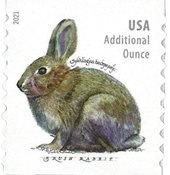 USA - Brush Rabbit - Postfrisk rullefrimærke
