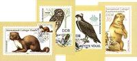 DDR 4 maxikort, dyr & fugle