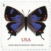 USA - California Hairstreak sommerfugl - Postfrisk frimærke