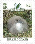 Isle of Man - EUROPA 2021 - Uhanalaiset villieläimet - Postituoreena