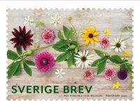 Sverige - Sensommerblomster - Postfrisk rullefrimærke