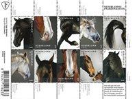 Países Bajos - Razas de caballos - Minihoja nuevo