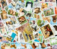 100枚不同有关狗类的邮票