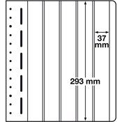 LIGHTHOUSE LB-Blank Sheet, 5-way division, vertical, p 1