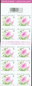 Belgique - Fleur Pétunia Rose - Carnet neuf