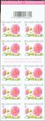 Belgique - Fleur Dahlia Rose - Carnet neuf Dahlia