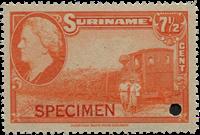 Suriname - Wilhelmina 1945 - No 228 - Neuf