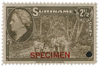 Suriname - Wilhelmina 1945 specimen opdruk 250 euro cataloguswaarde (nr.223