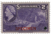 Suriname - Wilhelmina 1945 specimen opdruk 250 euro cataloguswaarde (nr.222