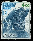 TAAF PA54 * Faune Otarie