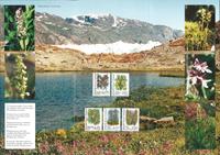 Grønland - Orkideer Mappe
