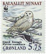 Grønland - 1999. Sneugler - 5,75 kr. - Flerfarvet