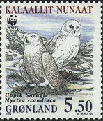 Groenland - 1999. Harfang des neiges - 5,50 kr. - Multicolores
