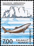 Grønland - 2002. ICES 100 år - 7,00 kr. - Flerfarvet