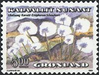 Groenland - 1989. Fleurs I - 5,00 kr. - Multicolore
