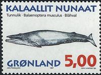 Groenland - 1997. Mammifères marins II - 5,00 kr. - Multicolore