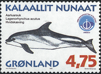 Groenland - 1998. Mammifères marins III - 4,75 kr.  - Multicolore