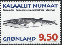 Grønland - 1996. Grønlandske hvaler - 9,50 kr. - Matrød / Flerfarvet