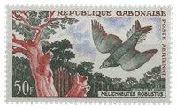 Gabon - Oiseau
