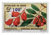 Congo - YT 338