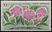 Congo - YT PA 2