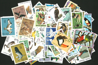Birds - 250 different stamps
