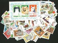 250 Animaux domestiques