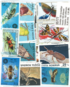 100 different insects