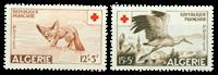 Algeriet - YT 343/44    8    6