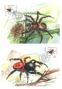 Lithuania - Spiders - Maxi Cards