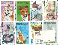 50枚不同狗类专题盖销票