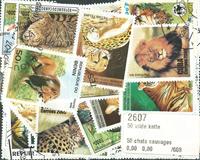 50枚不同野生猫科专题盖销票 - 2002年邮折