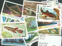 50枚不同鱼类专题盖销票