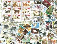 100张不同有关猫的邮票