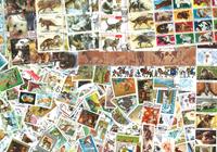 1000 four-legged  animals