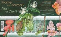 Belgique - Plante ou Animal - Timbre neuf