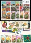 Cactus 40 timbres différents