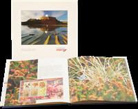 Guernsey - Årbog 2005 - Flot årbog