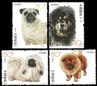 China - Dogs
