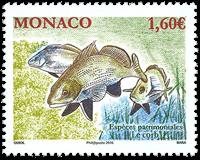 Monaco - Espèces protégées - Poissons - Timbre neuf