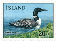 Island - AFA 445