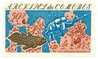 Comores 104