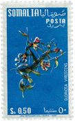 Somalie - Michel 325 neuf