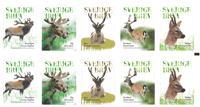 Suède - Cervidés de la forêt - Carnet neuf