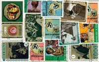 Fransk Guinea - 13 forskellige