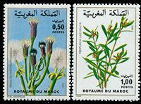 Maroc - YT 868-69 - Neuf