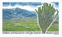 Fransk Antarktis - Blæksprutte - Postfrisk frimærke