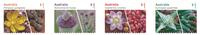 Australia - Succulent plants - Mint set 4 adh. stamps